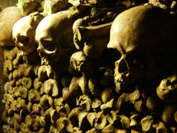 Paris Catacombes close up of skulls