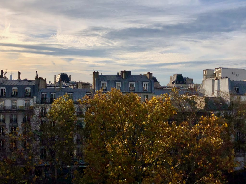 Paris roofs and skyline during sunset, pretty pastel colors