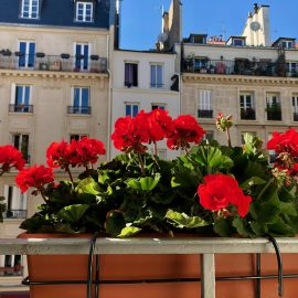 What to Consider When Apartment Hunting in Paris